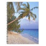 Playa de Sandy 10 Cuadernos