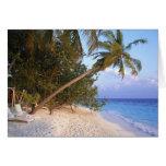 Playa de Sandy 10 Tarjeton
