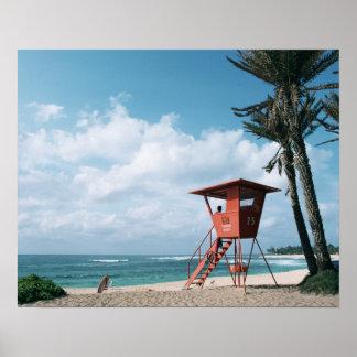 Playa de Sandy 5 Póster