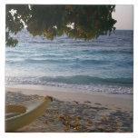 Playa de Sandy 6 Azulejos Cerámicos