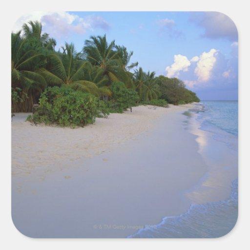 Playa de Sandy 7 Pegatina Cuadrada
