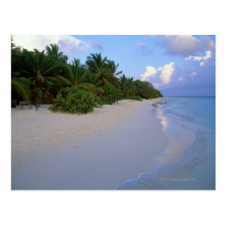 Playa de Sandy 7 Postal