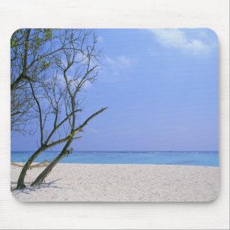 Playa de Sandy 9 Tapetes De Ratones