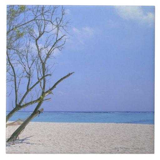 Playa de Sandy 9 Tejas