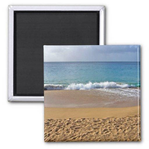 Playa de Sandy Iman De Nevera
