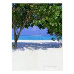 Playa de Sandy Postales