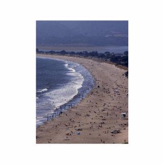 Playa de Stinson cerca de la costa del nacional de Fotoescultura Vertical