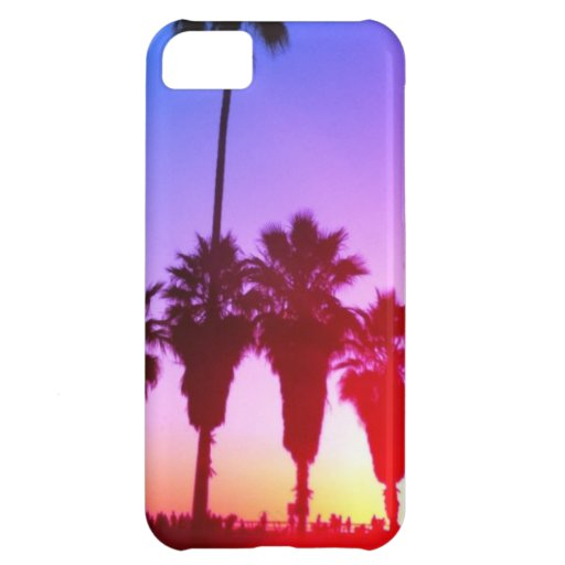 Playa de Venecia de las palmeras