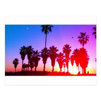 Playa de Venecia de las palmeras Tarjetas Postales