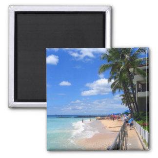 Playa de Waikiki, Oahu, Hawaii Imán Cuadrado