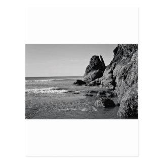 Playa del balanceo blanco y negro postales