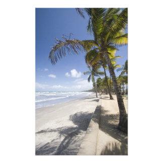 - Playa del Caribe de Trinidad - de Manzanilla enc Cojinete