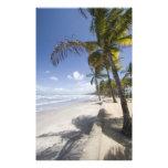 - Playa del Caribe de Trinidad - de Manzanilla enc Arte Con Fotos