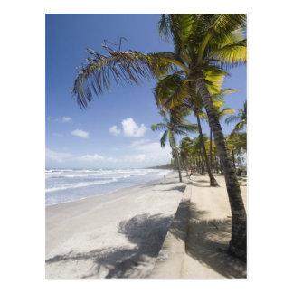 - Playa del Caribe de Trinidad - de Manzanilla Postales