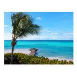 Playa del Caribe Tarjeta Postal