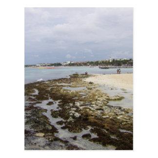Playa del Carmen, Quintana Roo Mexico Post Card
