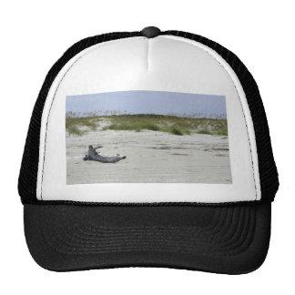 Playa del Cumberland Gorros