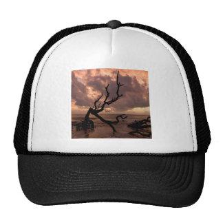Playa del Driftwood de la puesta del sol Gorros Bordados