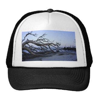 Playa del Driftwood Gorros
