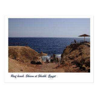 Playa del filón, Sharm el Sheikh, Egipto Tarjetas Postales