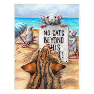 Playa del gato de la rata postal de la muestra de