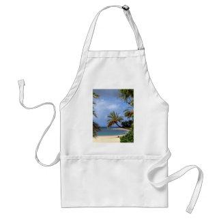Playa del norte tropical de la orilla Oahu Hawai Delantales