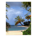 Playa del norte tropical de la orilla, Oahu, Hawai Tarjeta Postal