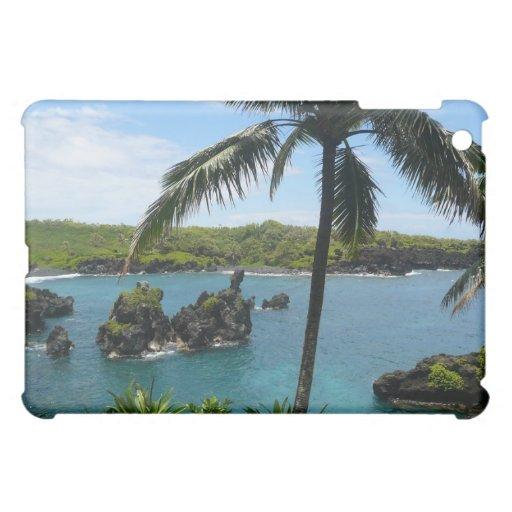 Playa del paraíso - Maui, Hawaii