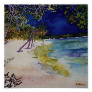 Playa del paraíso póster