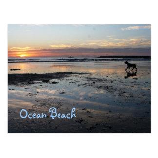 Playa del perro, playa del océano postales