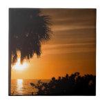 Playa del pie Meyers en la puesta del sol Tejas Cerámicas