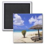 Playa del punto de los Cocos, Barbuda, Antigua Imán Cuadrado