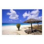 Playa del punto de los Cocos, Barbuda, Antigua Impresion Fotografica