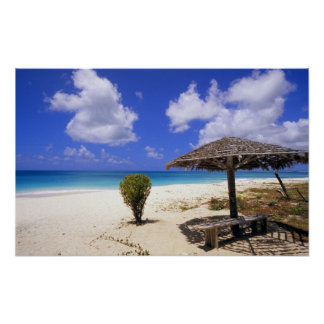 Playa del punto de los Cocos, Barbuda, Antigua Póster
