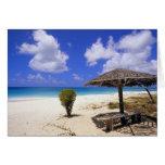 Playa del punto de los Cocos, Barbuda, Antigua Tarjeta De Felicitación