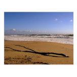 Playa del Rey Breakers - Mike Izzo Postcard