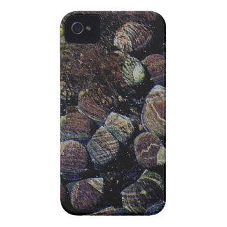 Playa del sur de Devon apretada vida marina en pis iPhone 4 Carcasa
