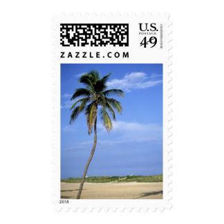 Playa del sur, Miami Beach, la Florida, los Sello
