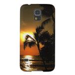 Playa dramática Hawaii de la palmera Fundas Para Galaxy S5