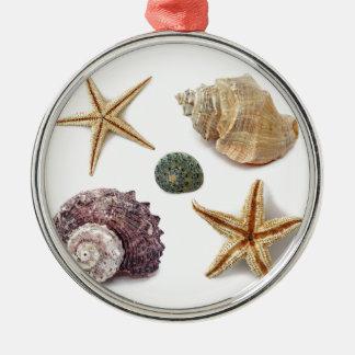 Playa elegante lamentable de los seashells adorno redondo plateado