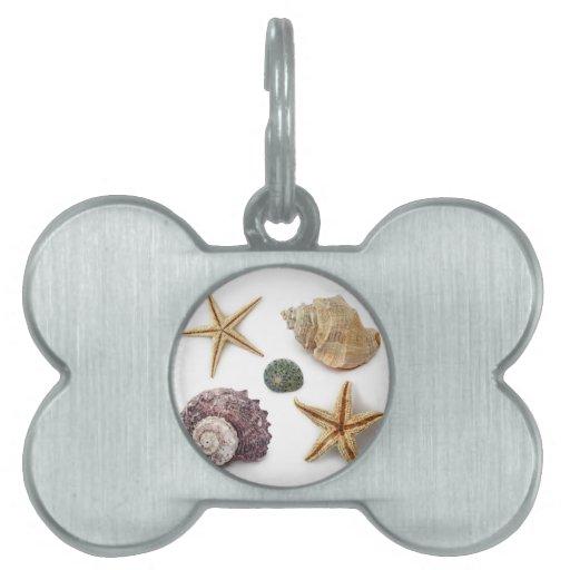 Playa elegante lamentable de los seashells elegant placa mascota