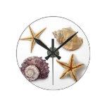 Playa elegante lamentable de los seashells elegant relojes