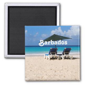 Playa en Barbados Imán Cuadrado
