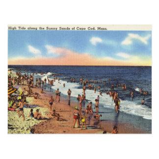 Playa en Cape Cod Tarjeta Postal
