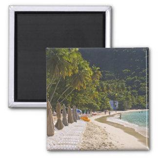 Playa en la bahía del jardín del bastón, isla de T Imán Cuadrado