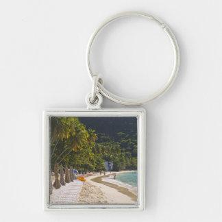 Playa en la bahía del jardín del bastón, isla de T Llavero Cuadrado Plateado