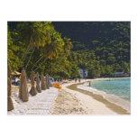 Playa en la bahía del jardín del bastón, isla de T Tarjeta Postal