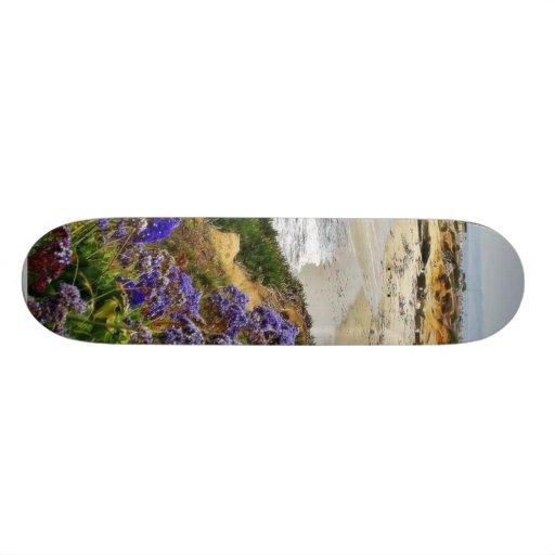 Playa en la ensenada de La Jolla Monopatines
