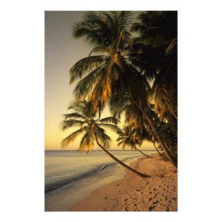Playa en la puesta del sol, Trinidad Cojinete