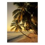 Playa en la puesta del sol, Trinidad Postal